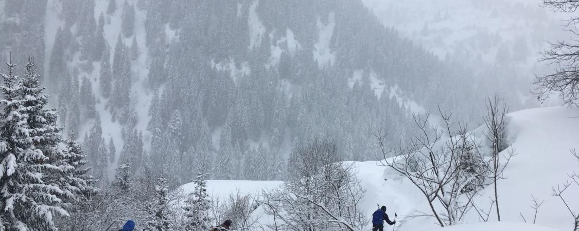 Dans le silence feutré d'une matinée neigeuse dans le Beaufortain...(photo : D.Delvaux)